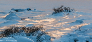 Snødrev lyst opp med dagens siste solstreif.