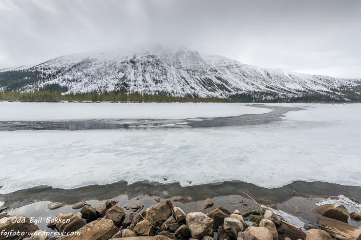 Fortsatt mye is under Sennsjøkampen