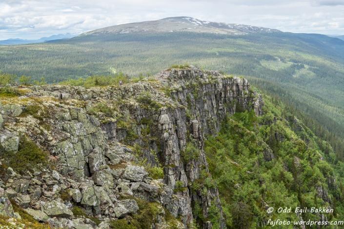 Mot Tverrfjellet (1209 moh)