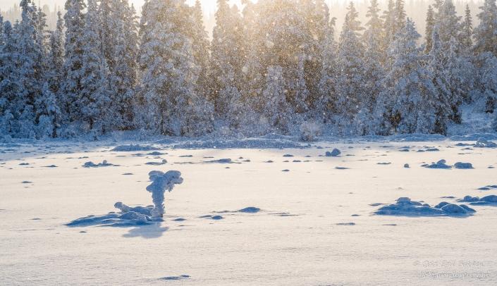 Mer snødryss  på tampen av dagen