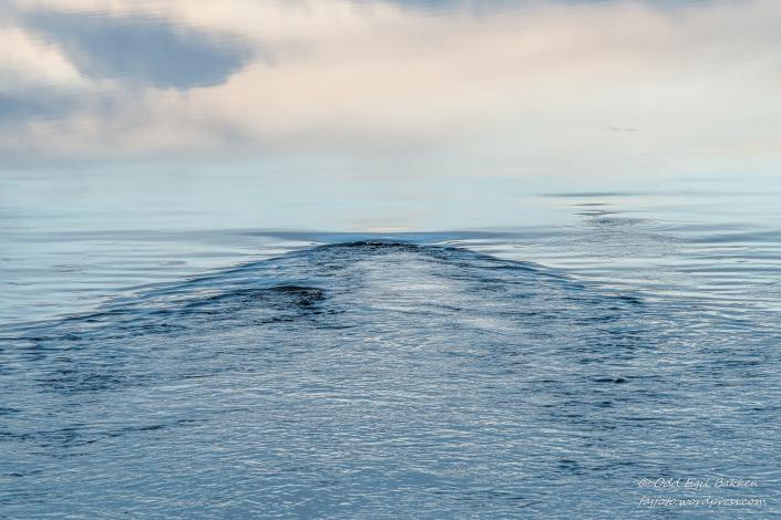"""Himmel og """"hav"""""""